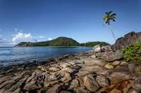 The lone Coconut of Seychelles by Christian Del Rosario