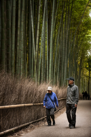 A Walk at the Bamboo Forest by Christian Del Rosario
